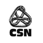 logo-csn